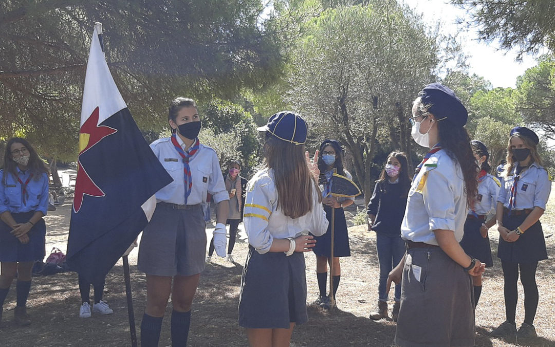 Covid vs. Scouts : Spain